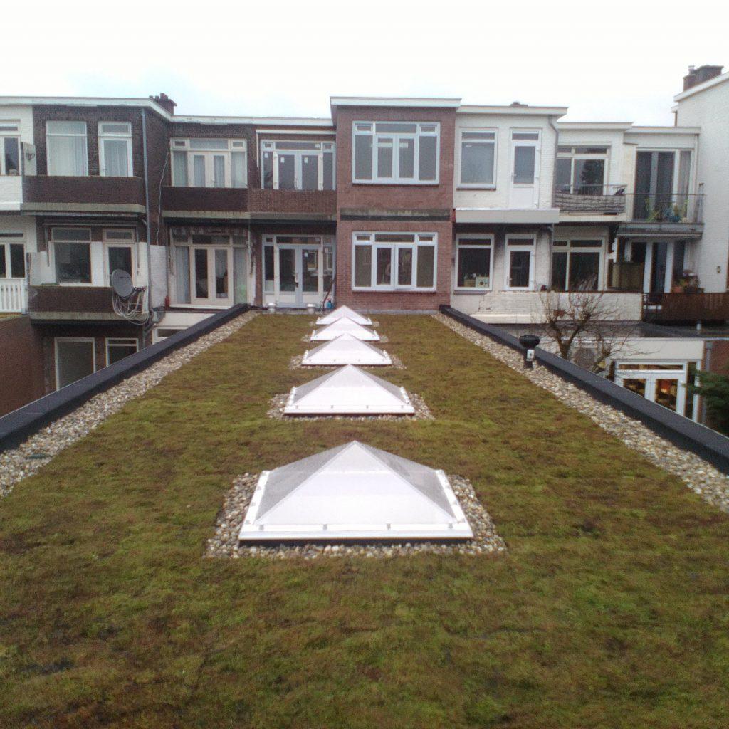 Dakrenovatie Molenstraat Den Haag